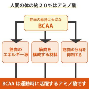 BCAA含む必須アミノ酸