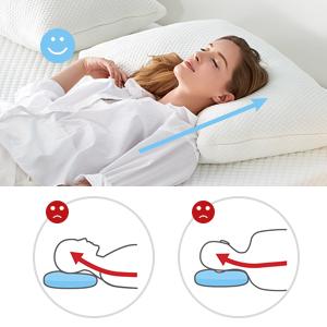 best pillows for sleeping queen Coop  full  pillows standard size set of 2