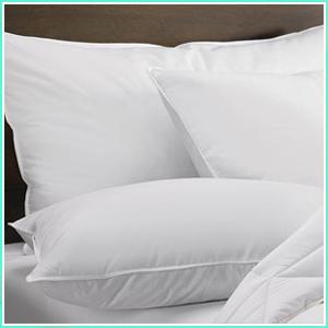 rotton pillow 16 x 24