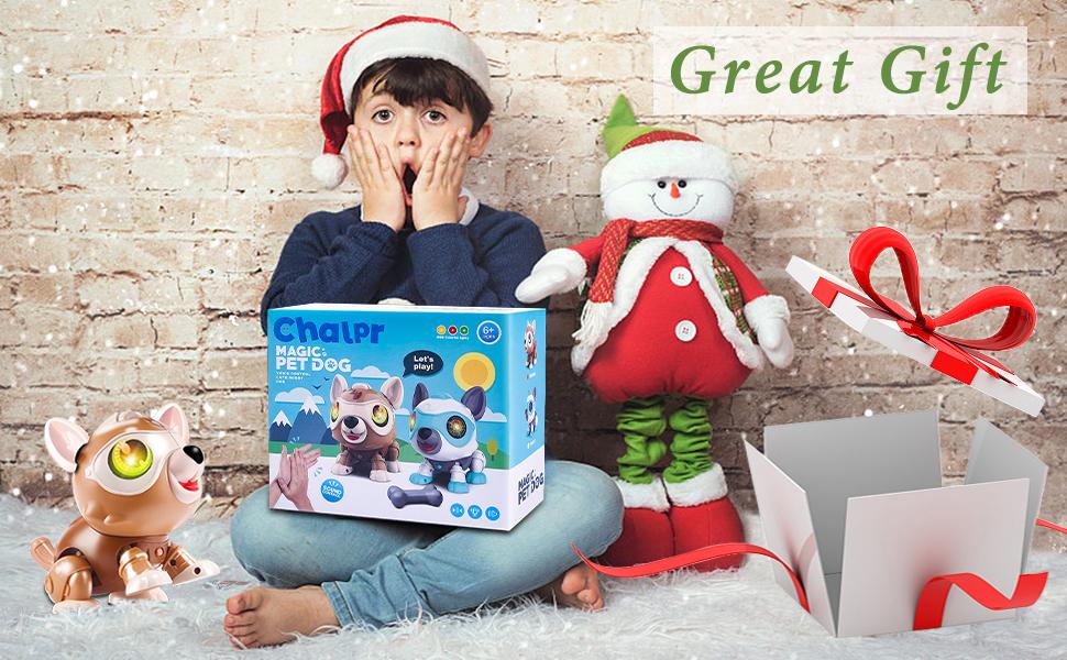 Interactive Gift