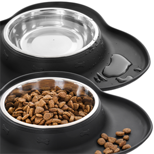 no spill dog bowls