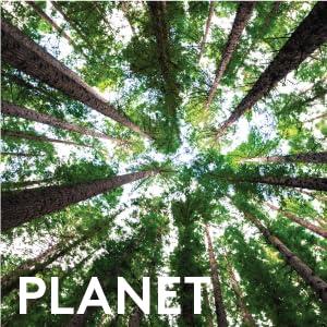 Planet new zealand honey co.