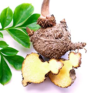 All natural Konjac and Ingredients