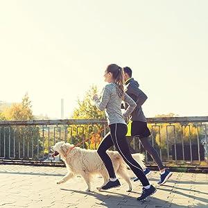 walk slip lead leash