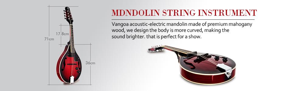 electric mandolin