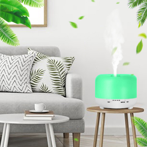 oil diffuser for room