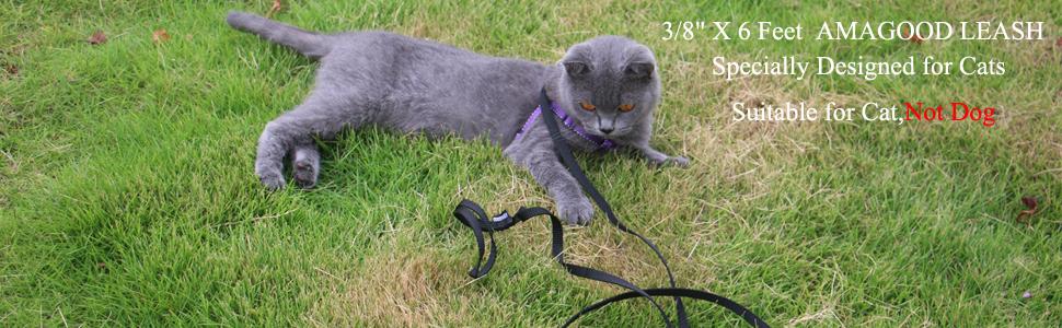 long cat leash,small leash,small lead,cat lead,cat leash,red leash,purple leash,blue ,orange,black
