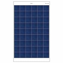 Bluebird 250W Polycrystalline Solar Panel