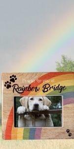rainbow bridge dog remembrance picture frame