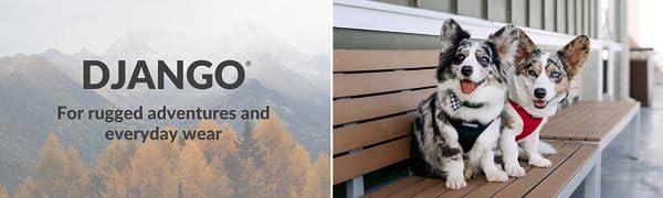 DJANGO Adventure Dog Harness - Comfortable, Durable, and Weather-Resistant Neoprene Dog Harness