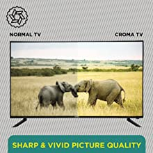 Sharp & Vivid Picture Quality