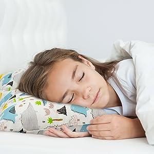 Dinosaur Toddler pillow