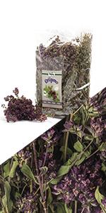 Oregano thee gedroogde kruiden hele stelen en bloemen natuurlijk verliezen infusie landbouw