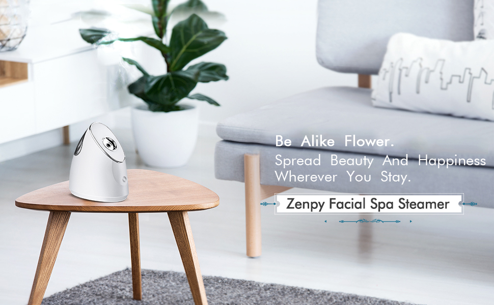 Amazon Com Zenpy Nano Ionic Facial Steamer Warm Mist