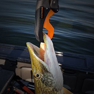 fishing scale, lip gripper, fishing scale with floating lip gripper, hanging scale