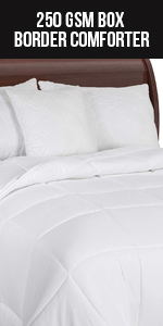 All Season Box Border Stitched Comforter - Premium Quality