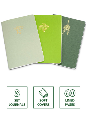 set of 3 notebooks lined