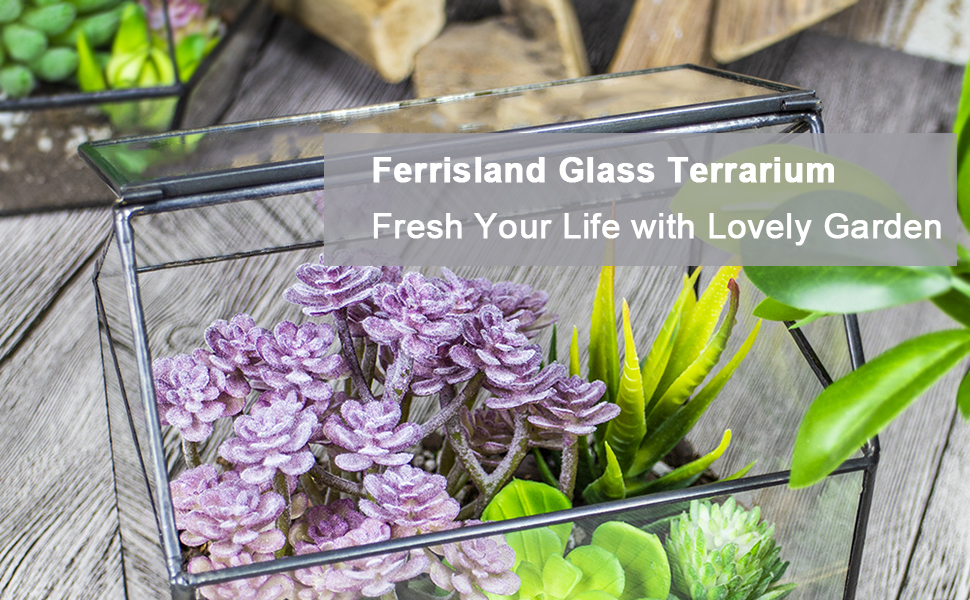 Ferrisland Glass Terrarium