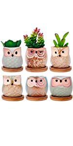 ROSE CREATE 6 Pcs 2.5 Inches Owl Pots with Bamboo Trays