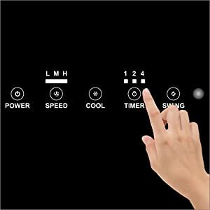 Electronic Timer Control