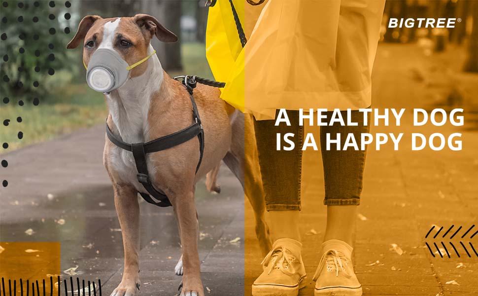 BIGTREE RESPIRATORY DOG MASK