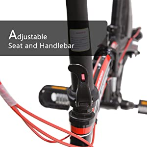 seat and handlebar