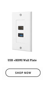 USB+HDMI Wall Plate