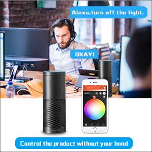 work with amazon alexa voice control app control