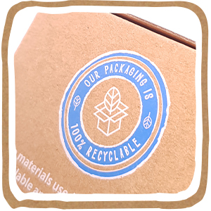 eco packaging, cardboard only, no plastic