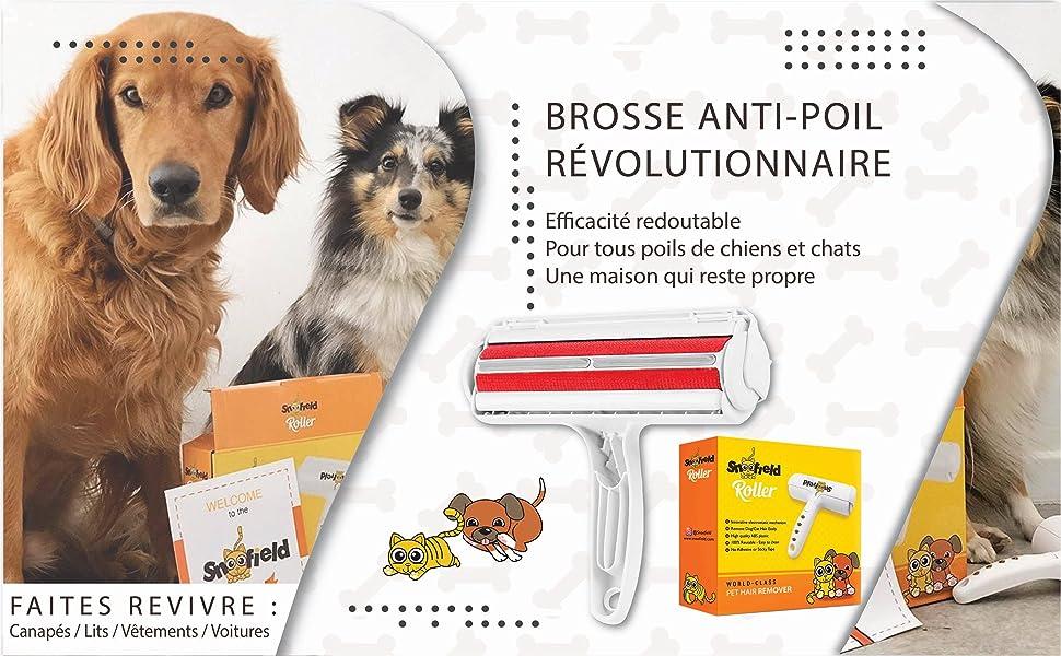ramasse nettoyage canapé voiture tapis à d'animaux coussin ace2ace épilateur fauteuil vêtement omasi