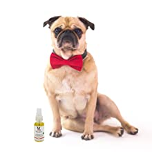 paw conditioner, grapeseed oil, paw revitalizer, dry nose