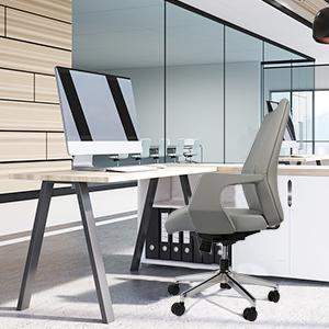 LUCKYERMORE Executive Office Chair