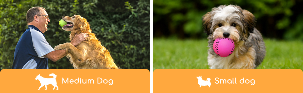 lanceur de balle pour chien