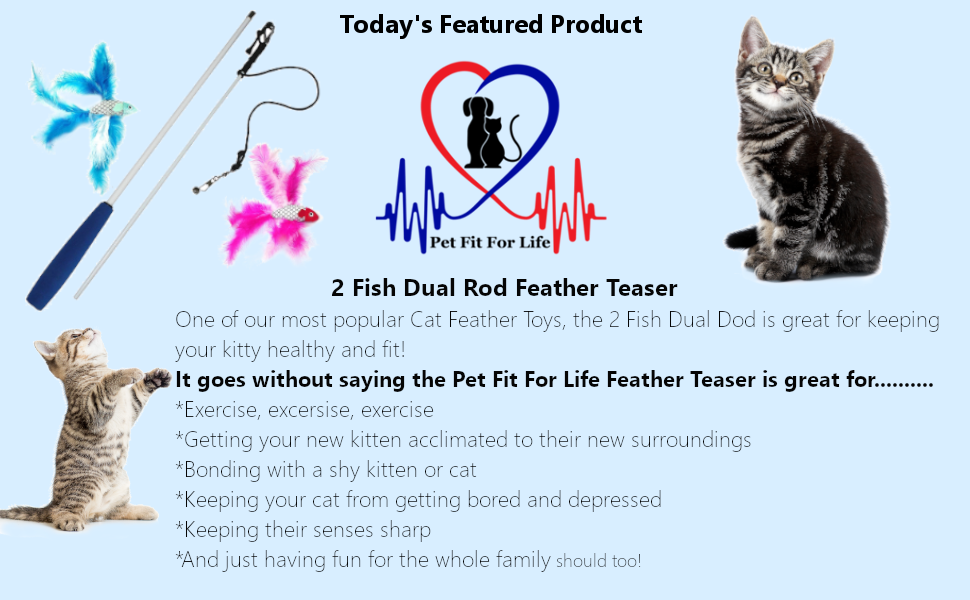 Pet Fit For Life 2 Fish Dual Rod Cat Feather Teaser Toy