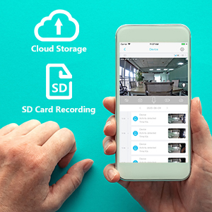 cloud storage and local SD card recording