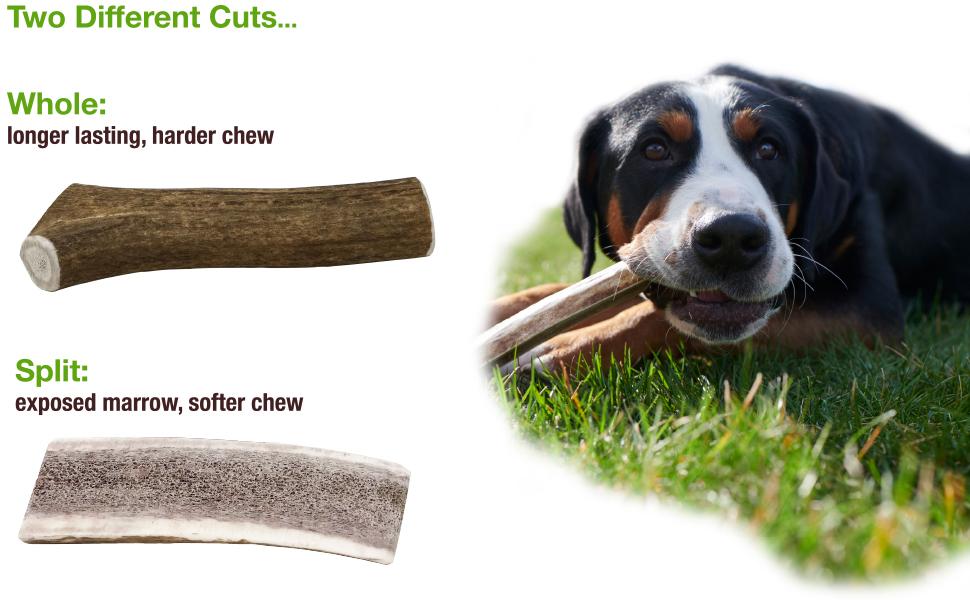 Buck Bone Organics, Elk Antler, Natural Dog Chews, Rawhide Alternative, Natural Dog Treats, dog bone