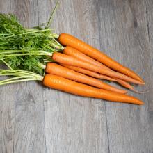 Bone Broth Ingredients - Carrots