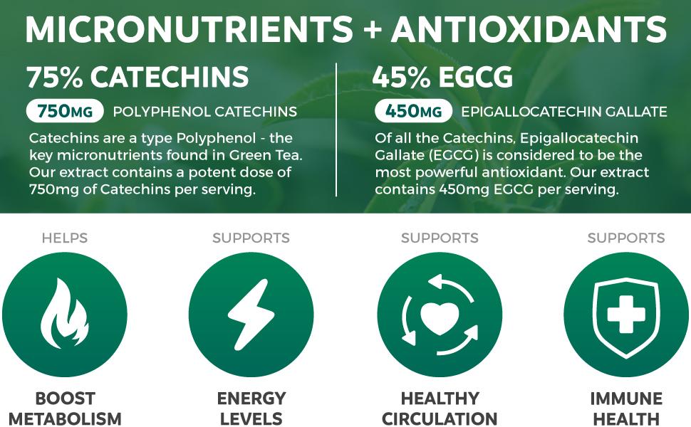 Polyphenol Catechins, Epigallocatechin Gallate ECGC, Antioxidants, Natural Diet Helper