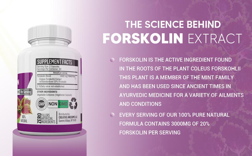 forskolin for weight loss maximum strength