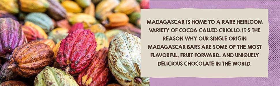 cocoa pods, madagascar chocolate, heirloom criollo