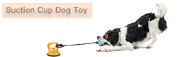 Suction Cup Dog Toy