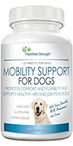 pain relief for dogs pain meds for dogs pain medicine for dogs pain medication for dogs dog in pain