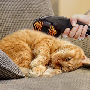 accesorio para mascotas, suave, no daña, aspira pelo, cepillo mascotas