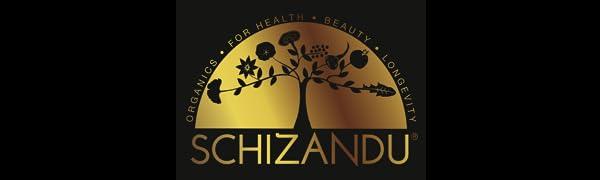 schizandu curcumin extract 98% turmeric antioxidant anti-inflammatory mental focus performance heart