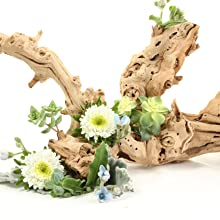 Grapewood Branch Centerpiece