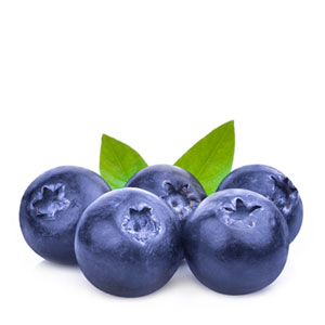 magnesium magblue mag blue blueberries purity products magvantage bisglycinate chelate