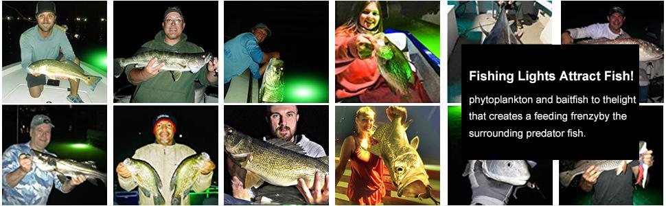 Green Night Fishing Finder