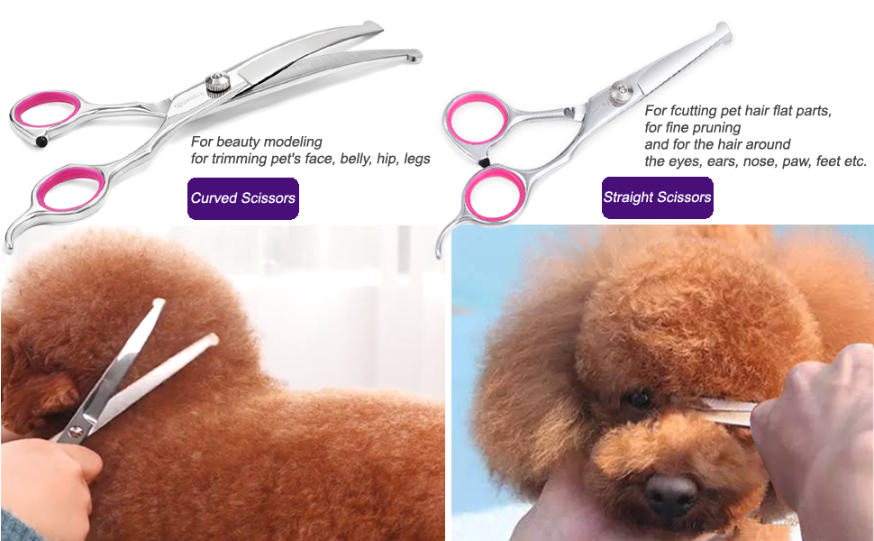 Curved Scissors & Straight Scissors
