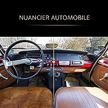nuanciers constructeurs automobile