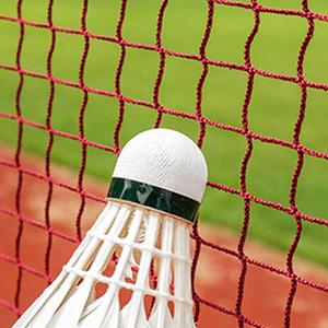Réglable pour Sports 610 x 76 CM HOGAR AMO Filet de Badminton Rouge